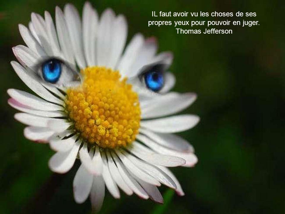 IL faut avoir vu les choses de ses propres yeux pour pouvoir en juger. Thomas Jefferson