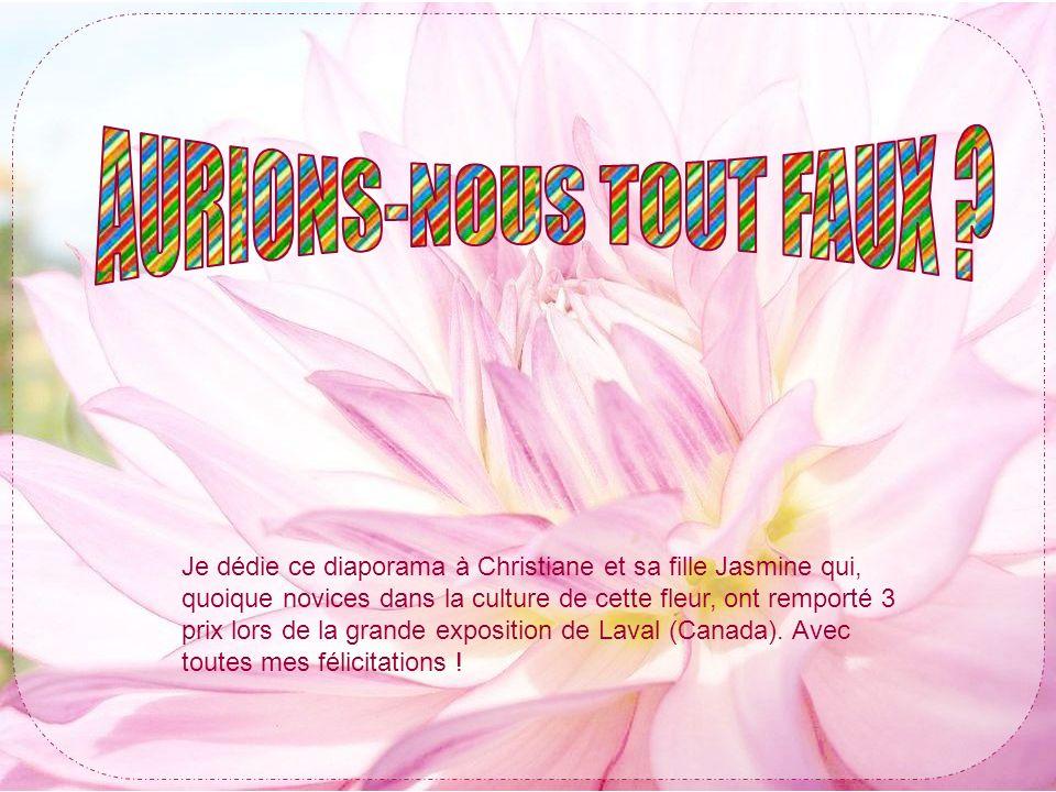 Je dédie ce diaporama à Christiane et sa fille Jasmine qui, quoique novices dans la culture de cette fleur, ont remporté 3 prix lors de la grande exposition de Laval (Canada).