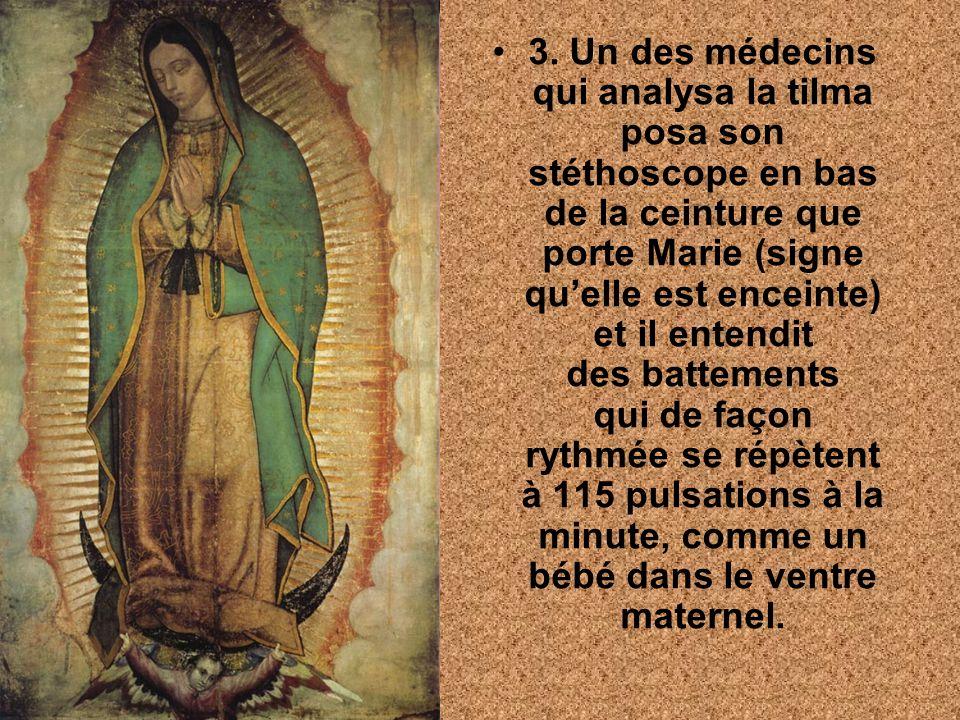 Tous ces faits inexplicables qui résistent au temps nous font comprendre, quencore aujourdhui, notre Mère Marie veut que tous ses enfants aient droit à la vie.