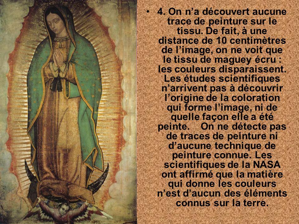 Pour finir, considère trois faits plus surprenants: 1. Guadalupe signifie en langue indigène: écrase la tête du serpent .