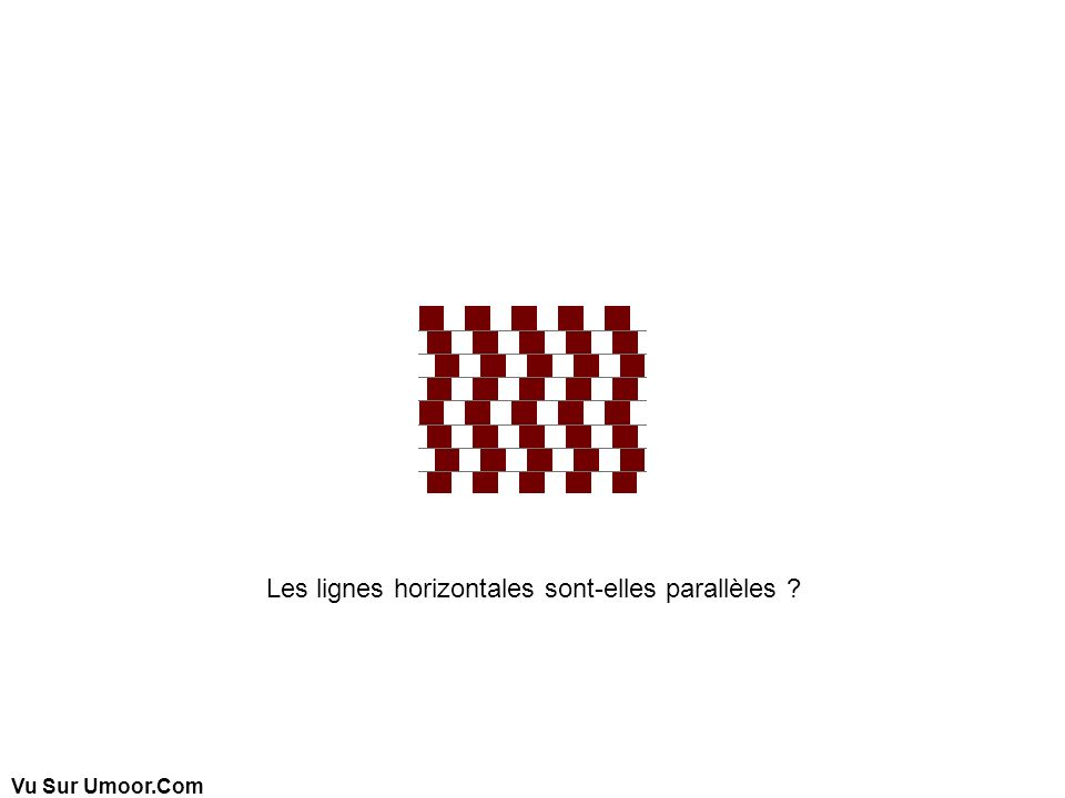 Vu Sur Umoor.Com Les lignes horizontales sont-elles parallèles ?