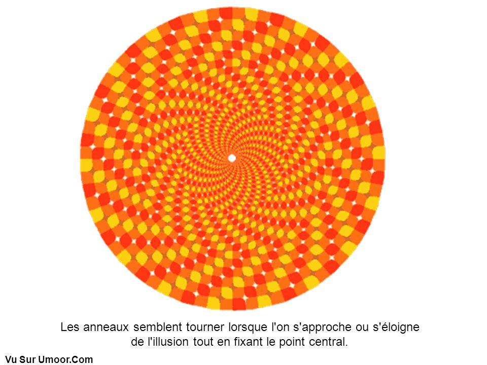 Vu Sur Umoor.Com Les anneaux semblent tourner lorsque l'on s'approche ou s'éloigne de l'illusion tout en fixant le point central.