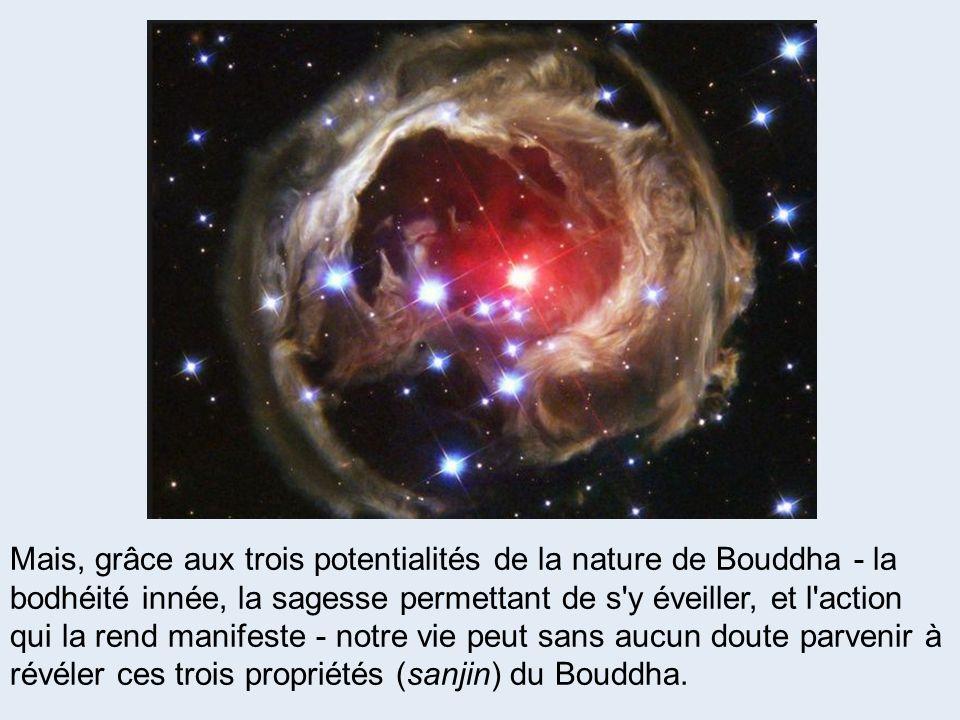 Mais, grâce aux trois potentialités de la nature de Bouddha - la bodhéité innée, la sagesse permettant de s'y éveiller, et l'action qui la rend manife