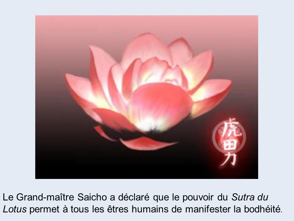 Le Grand-maître Saicho a déclaré que le pouvoir du Sutra du Lotus permet à tous les êtres humains de manifester la bodhéité.