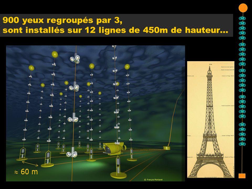 60 m 900 yeux regroupés par 3, sont installés sur 12 lignes de 450m de hauteur…