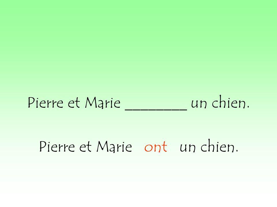 Pierre et Marie ________ un chien. Pierre et Marie ont un chien.