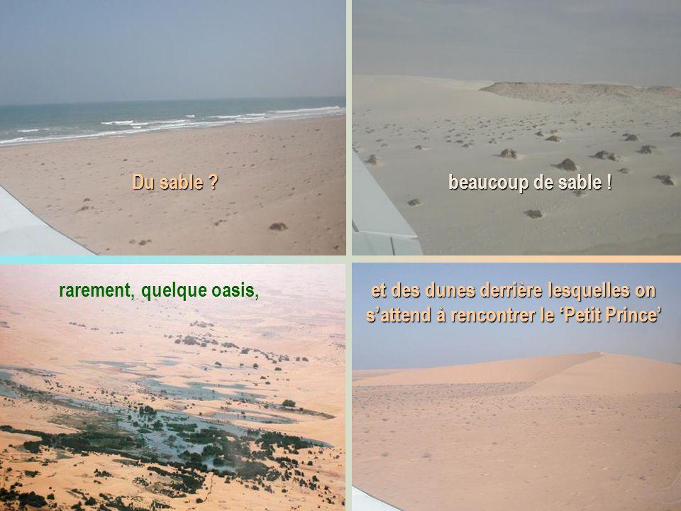 Du sable ? beaucoup de sable ! rarement, quelque oasis, et des dunes derrière lesquelles on sattend à rencontrer le Petit Prince