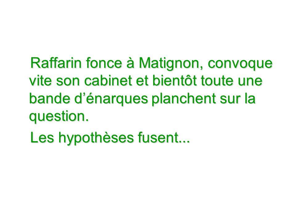 Raffarin fonce à Matignon, convoque vite son cabinet et bientôt toute une bande dénarques planchent sur la question.