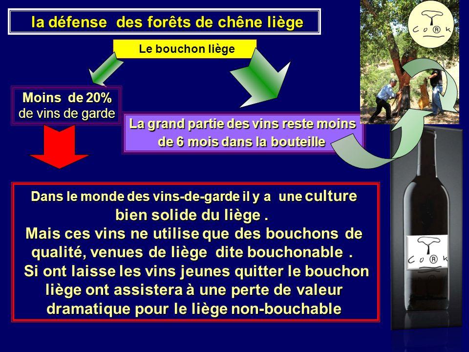 la défense des forêts de chêne liège la défense des forêts de chêne liège Le bouchon liège La grand partie des vins reste moins de 6 mois dans la bout