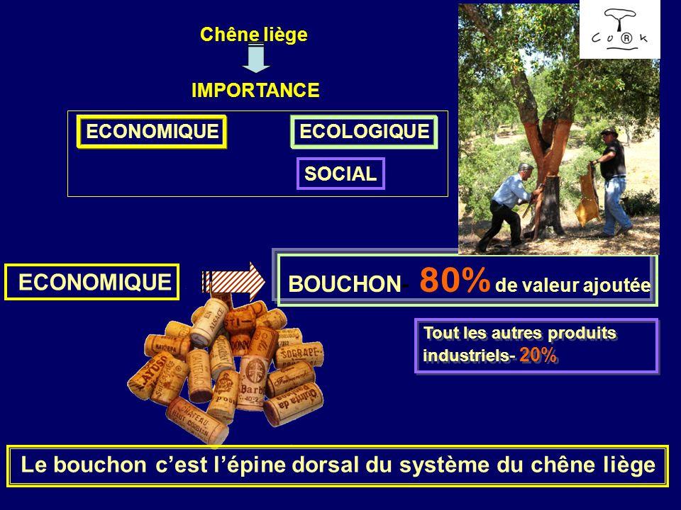 Chêne liège IMPORTANCE ECONOMIQUEECOLOGIQUE SOCIAL ECONOMIQUE BOUCHON- 80% de valeur ajoutée Tout les autres produits industriels- 20% Le bouchon cest