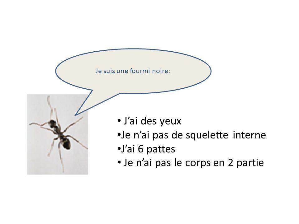 Je suis une fourmi noire: Jai des yeux Je nai pas de squelette interne Jai 6 pattes Je nai pas le corps en 2 partie