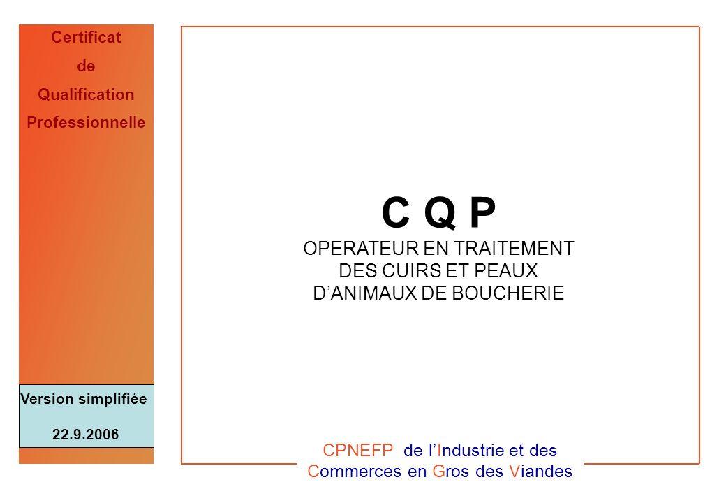 CQP Op. CuirICGV - 22.9. 20060 Certificat de Qualification Professionnelle C Q P OPERATEUR EN TRAITEMENT DES CUIRS ET PEAUX DANIMAUX DE BOUCHERIE CPNE