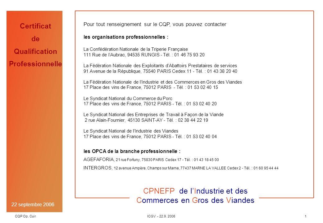 CQP Op. CuirICGV - 22.9. 20061 Version 00 du 21 juillet 2004 OPEN INGENIERIE Certificat de Qualification Professionnelle Version 00 du 21 juillet 2004