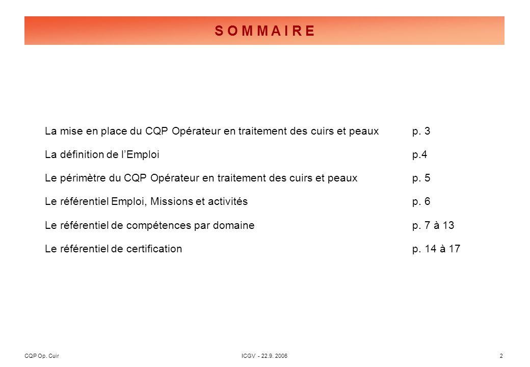 CQP Op. CuirICGV - 22.9. 20062 S O M M A I R E La mise en place du CQP Opérateur en traitement des cuirs et peauxp. 3 La définition de lEmploip.4 Le p