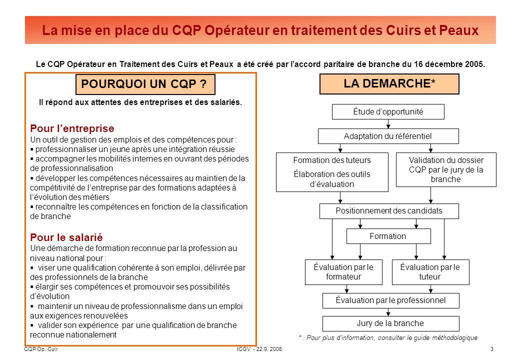 CQP Op. CuirICGV - 22.9. 20063 La mise en place du CQP Opérateur en traitement des Cuirs et Peaux Le CQP Opérateur en Traitement des Cuirs et Peaux a