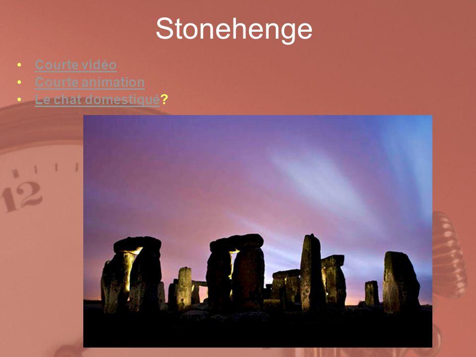 Stonehenge Courte vidéo Courte animation Le chat domestiqué?Le chat domestiqué