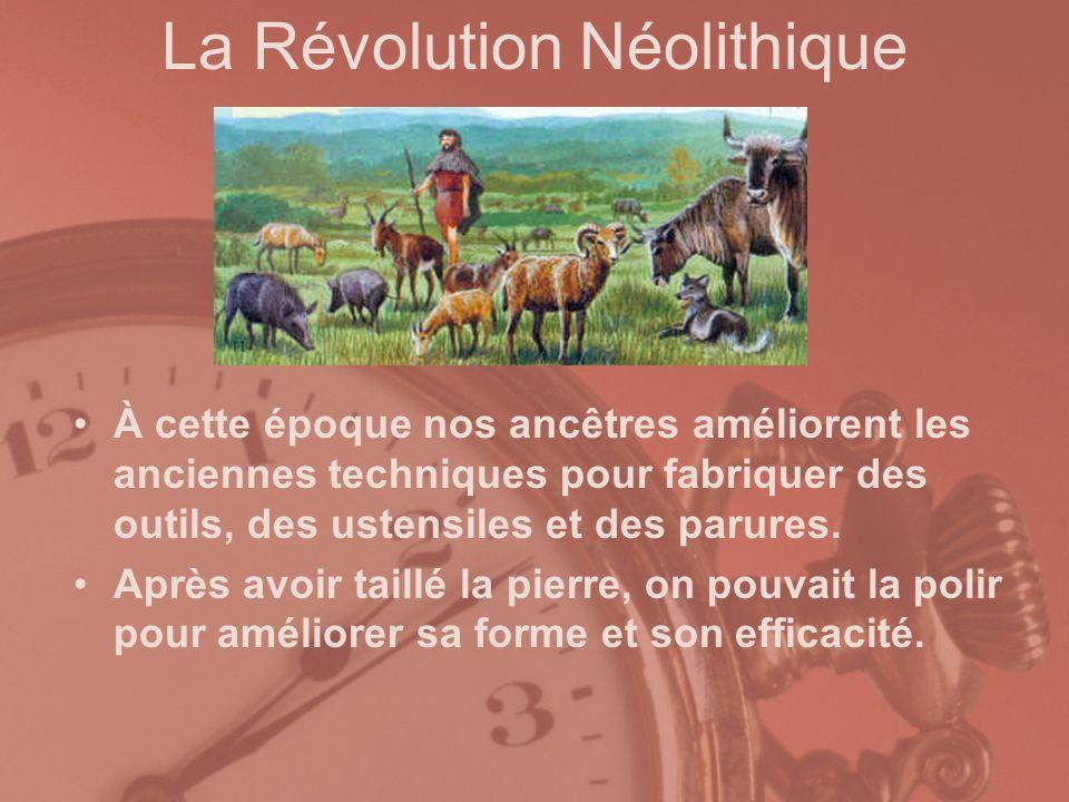 La Révolution Néolithique À cette époque nos ancêtres améliorent les anciennes techniques pour fabriquer des outils, des ustensiles et des parures. Ap