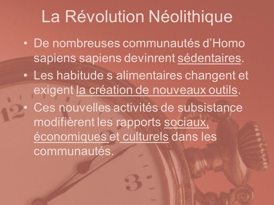 La Révolution Néolithique De nombreuses communautés dHomo sapiens sapiens devinrent sédentaires. Les habitude s alimentaires changent et exigent la cr