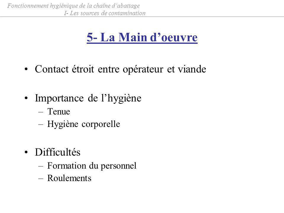 Contact étroit entre opérateur et viande Importance de lhygiène –Tenue –Hygiène corporelle Difficultés –Formation du personnel –Roulements 5- La Main