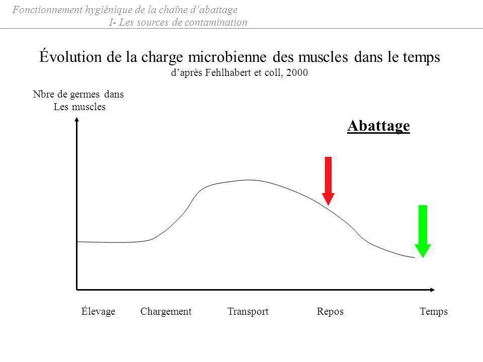 Évolution de la charge microbienne des muscles dans le temps daprès Fehlhabert et coll, 2000 Fonctionnement hygiénique de la chaîne dabattage I- Les s