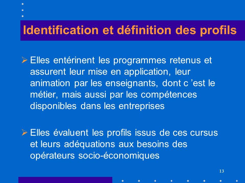 13 Identification et définition des profils Elles entérinent les programmes retenus et assurent leur mise en application, leur animation par les ensei