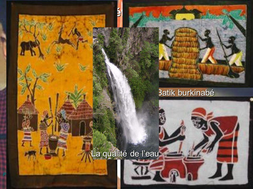 Dr Marie-Ange Cotteret Forum sur l investissement en Afrique de l Ouest 21 - 23 février 2006 Menuiserie Puycelci France Jacquot, Chef datelier Atelier