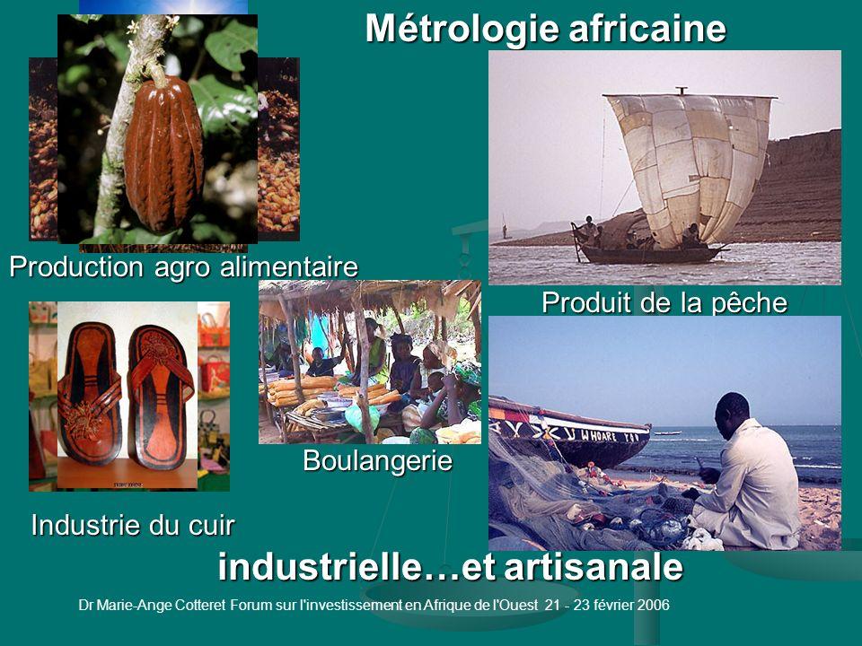 Dr Marie-Ange Cotteret Forum sur l investissement en Afrique de l Ouest 21 - 23 février 2006 Introduction 1 - La métrologie 1.1 - Types de métrologie 1.2 - Types de compétences 2 - La métrologie dans les entreprises 2.1 - Témoignages 2.