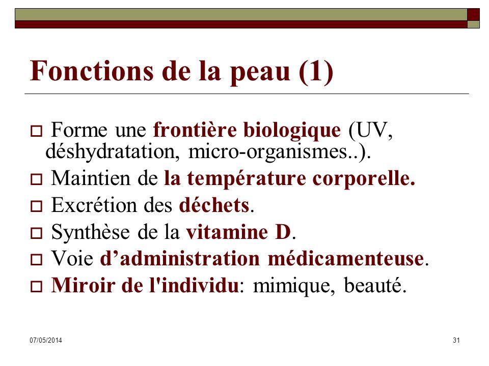 07/05/201431 Fonctions de la peau (1) Forme une frontière biologique (UV, déshydratation, micro-organismes..). Maintien de la température corporelle.