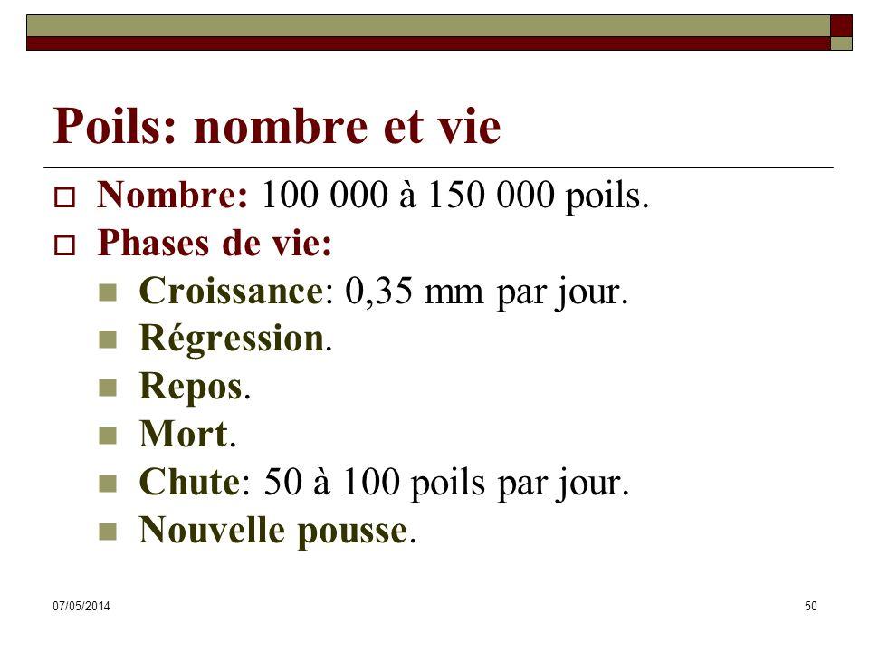 07/05/201450 Poils: nombre et vie Nombre: 100 000 à 150 000 poils. Phases de vie: Croissance: 0,35 mm par jour. Régression. Repos. Mort. Chute: 50 à 1
