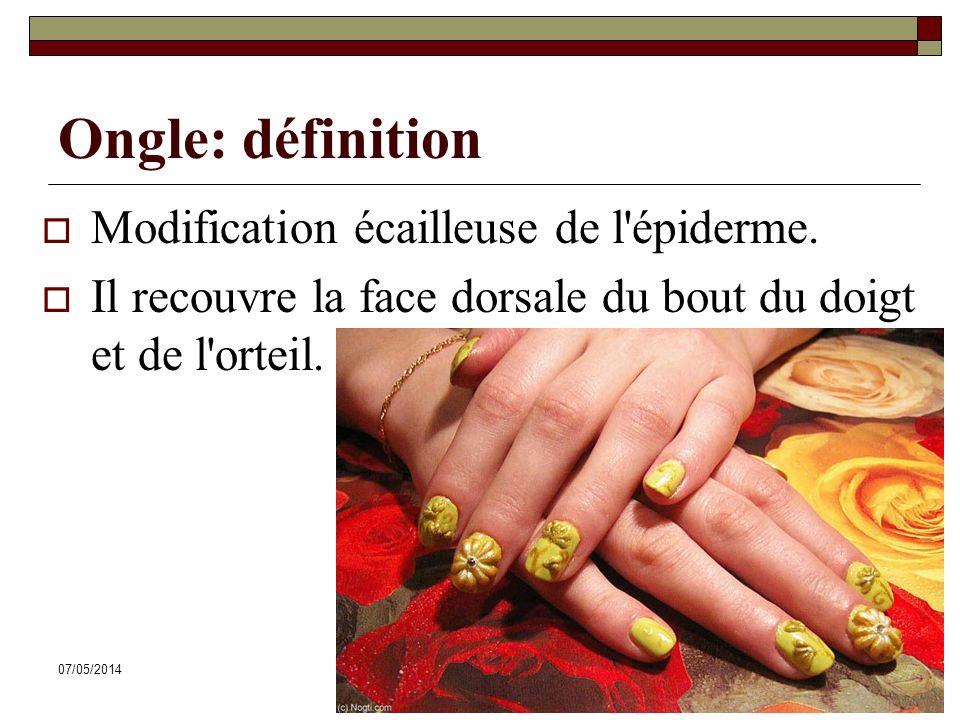 07/05/2014Dr. ABDALLAH - Système tégumentaire58 Ongle: définition Modification écailleuse de l'épiderme. Il recouvre la face dorsale du bout du doigt