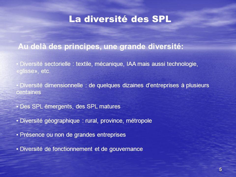 5 La diversité des SPL Au delà des principes, une grande diversité: Diversité sectorielle : textile, mécanique, IAA mais aussi technologie, «glisse»,