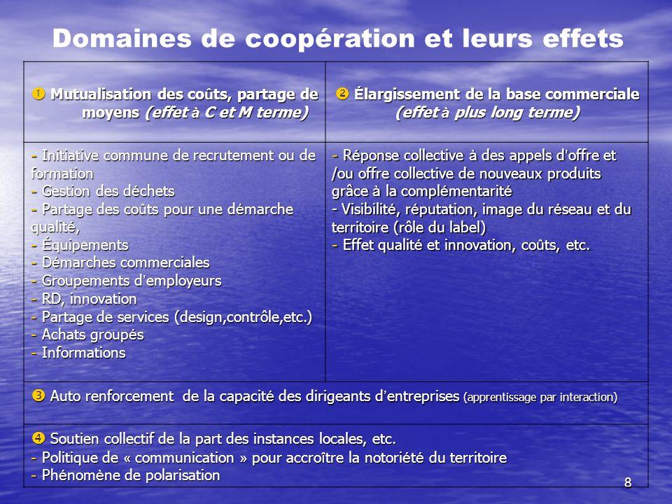 8 Domaines de coopération et leurs effets Mutualisation des co û ts, partage de moyens (effet à C et M terme) Mutualisation des co û ts, partage de mo