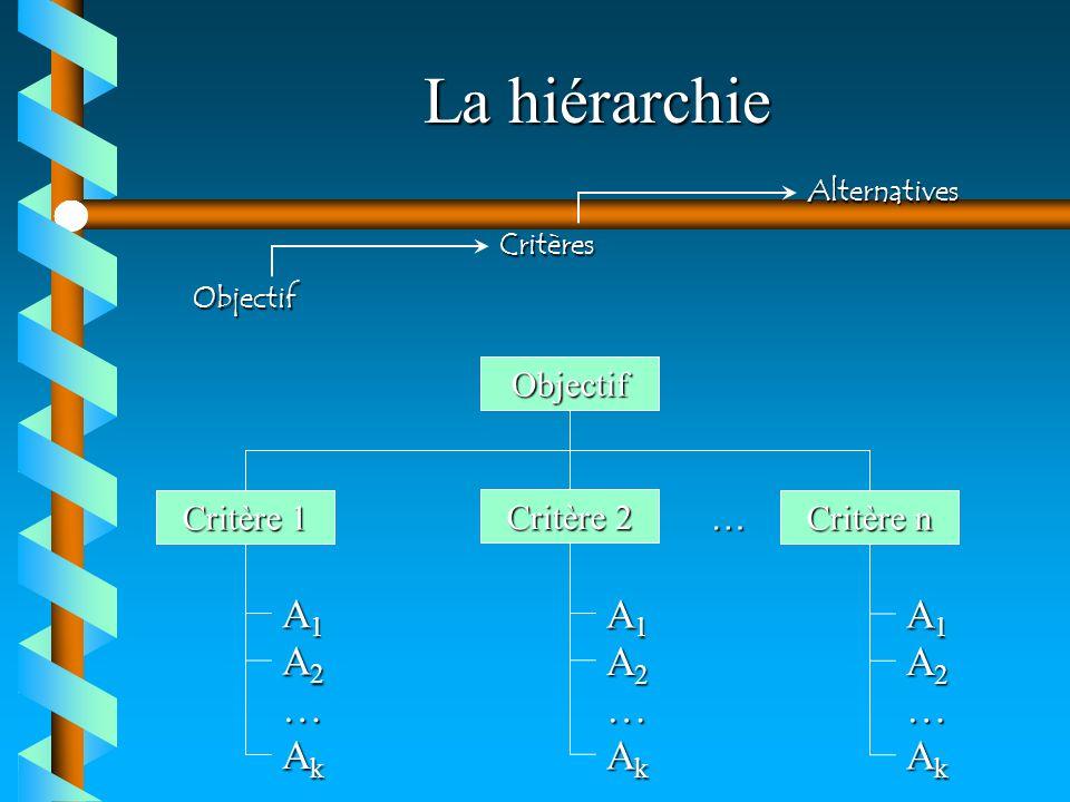 La hiérarchie Objectif Critères Alternatives Objectif Critère 1 Critère 2 Critère n A1A1A1A1 A2A2A2A2 AkAkAkAk … A1A1A1A1 A2A2A2A2 AkAkAkAk … A1A1A1A1