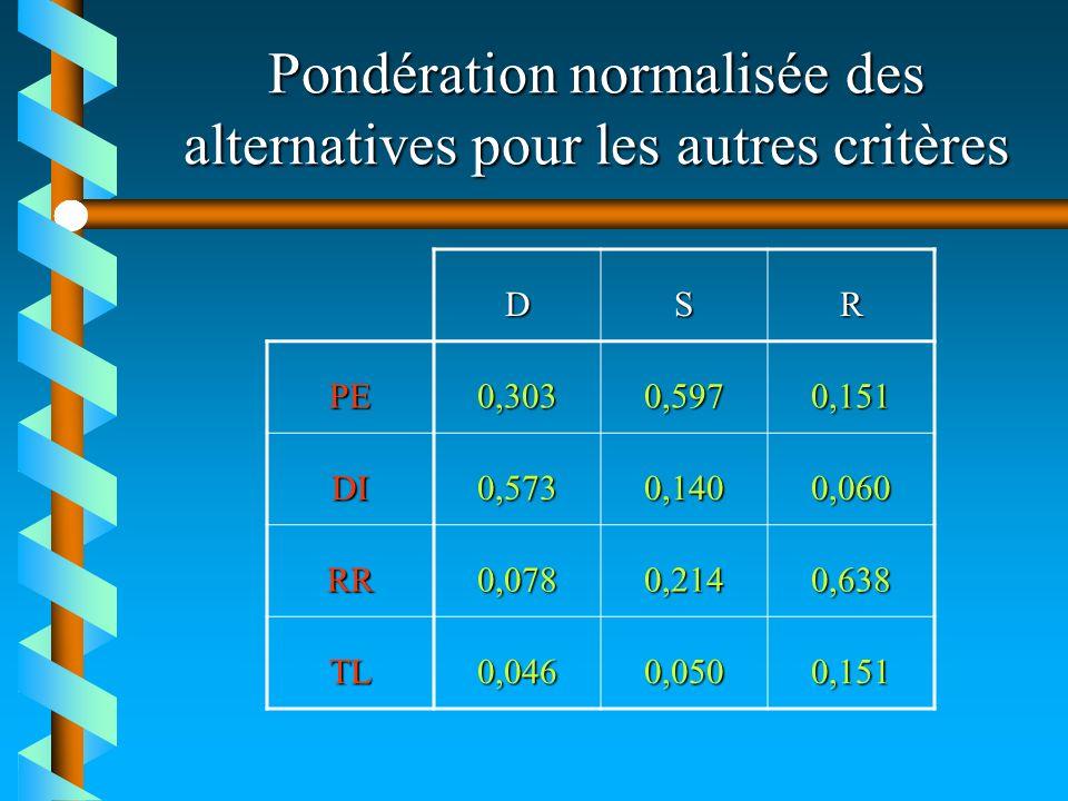 Pondération normalisée des alternatives pour les autres critères DSR PE0,3030,5970,151 DI0,5730,1400,060 RR0,0780,2140,638 TL0,0460,0500,151