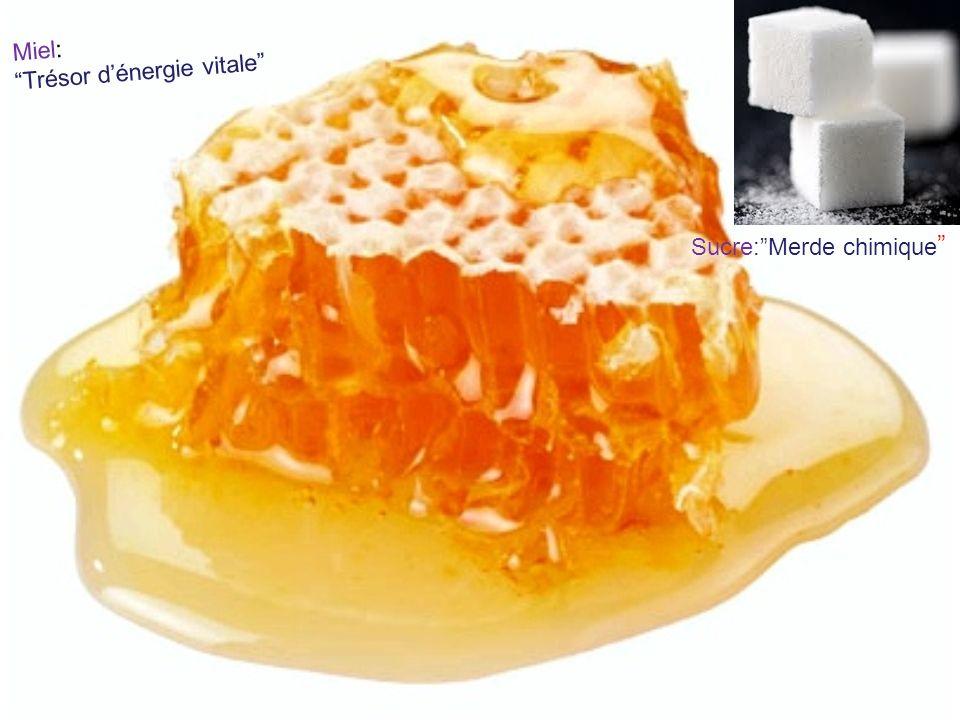 Miel: Trésor dénergie vitale Sucre:Merde chimique