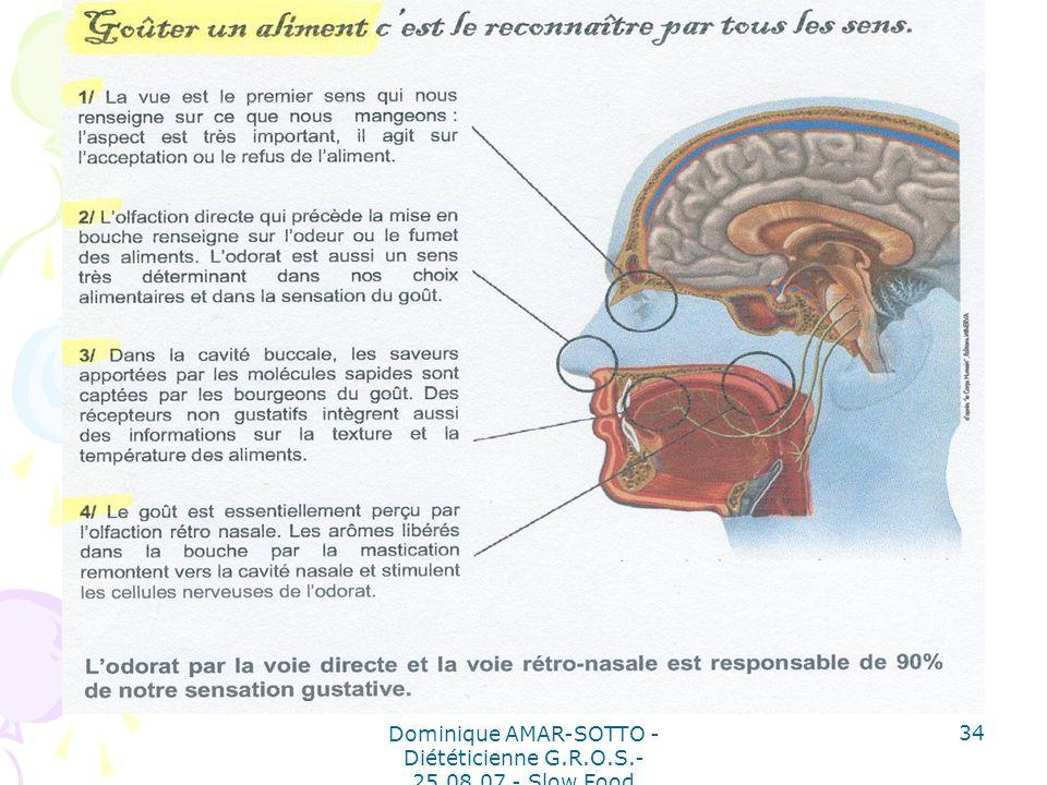 Dominique AMAR-SOTTO - Diététicienne G.R.O.S.- 25.08.07 - Slow Food 34