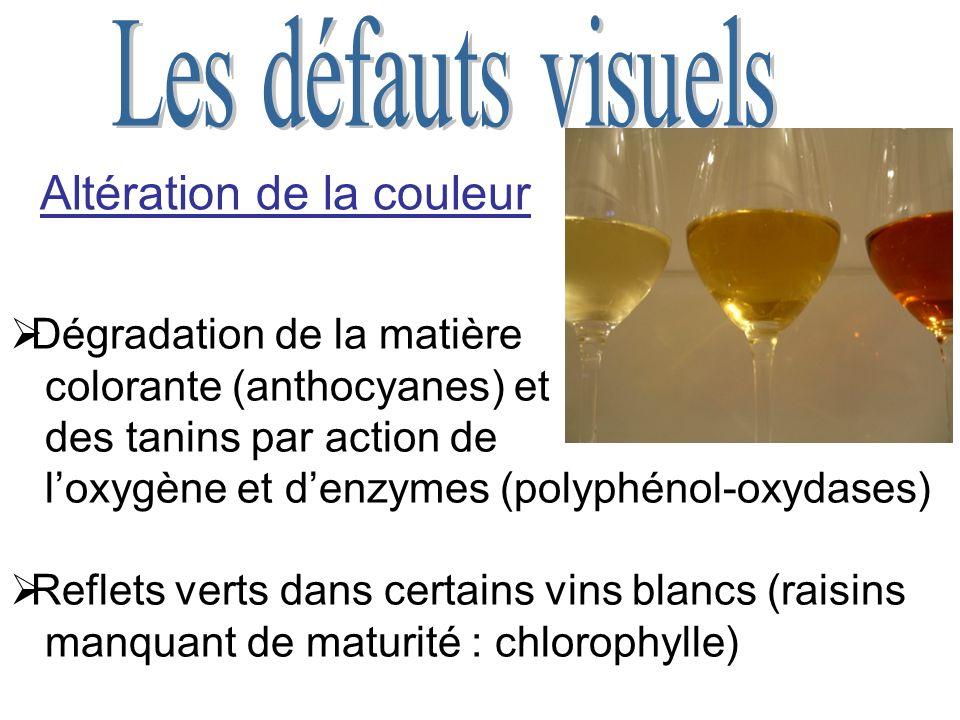 Altération de la couleur Dégradation de la matière colorante (anthocyanes) et des tanins par action de loxygène et denzymes (polyphénol-oxydases) Reflets verts dans certains vins blancs (raisins manquant de maturité : chlorophylle)