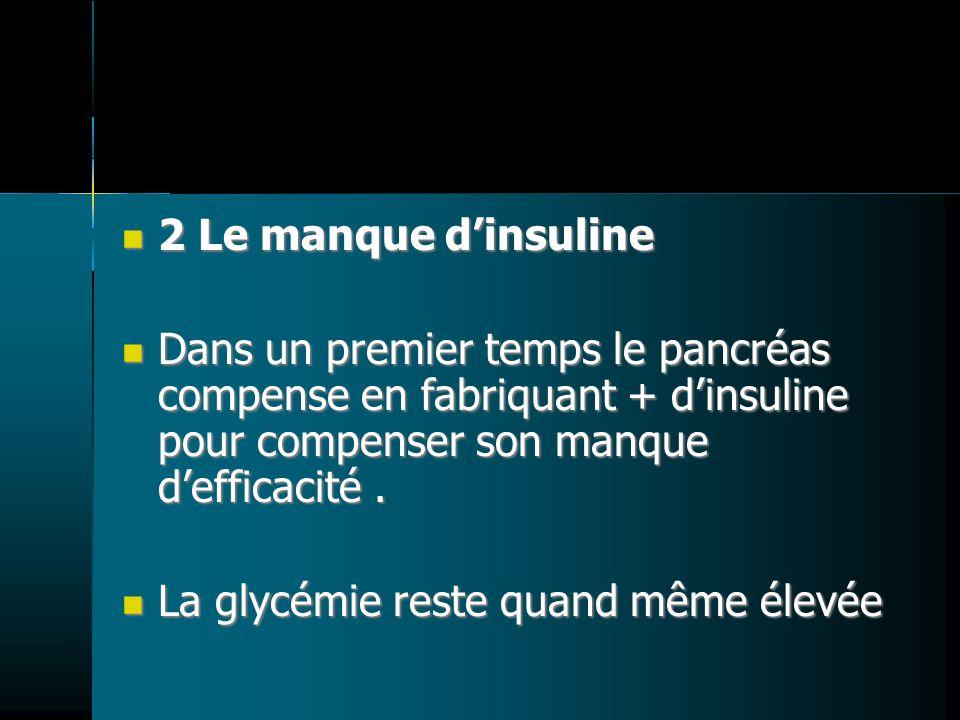 2 Le manque dinsuline 2 Le manque dinsuline Dans un premier temps le pancréas compense en fabriquant + dinsuline pour compenser son manque defficacité
