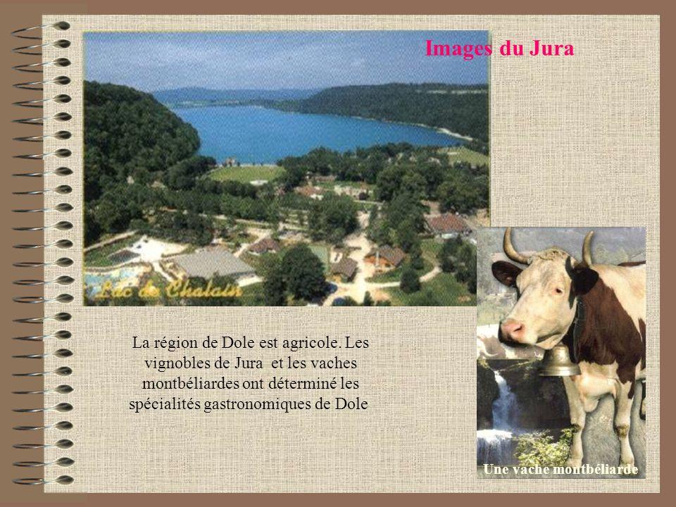 Images du Jura Une vache montbéliarde La région de Dole est agricole. Les vignobles de Jura et les vaches montbéliardes ont déterminé les spécialités