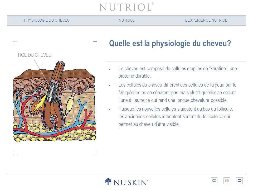 PHYSIOLOGIE DU CHEVEUNUTRIOLLEXPERIENCE NUTRIOL Quelle est la physiologie du cheveu? Le cheveu est composé de cellules emplies de kératine, une protéi