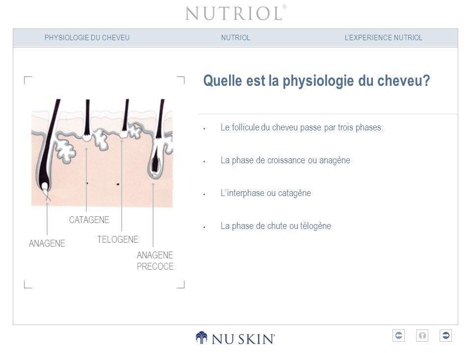 PHYSIOLOGIE DU CHEVEUNUTRIOLLEXPERIENCE NUTRIOL Quelle est la physiologie du cheveu? Le follicule du cheveu passe par trois phases: La phase de croiss