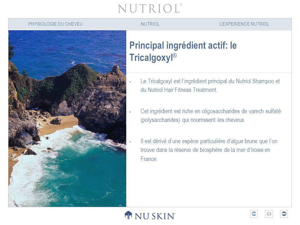 PHYSIOLOGIE DU CHEVEUNUTRIOLLEXPERIENCE NUTRIOL Principal ingrédient actif: le Tricalgoxyl ® Le Tricalgoxyl est lingrédient principal du Nutriol Shamp