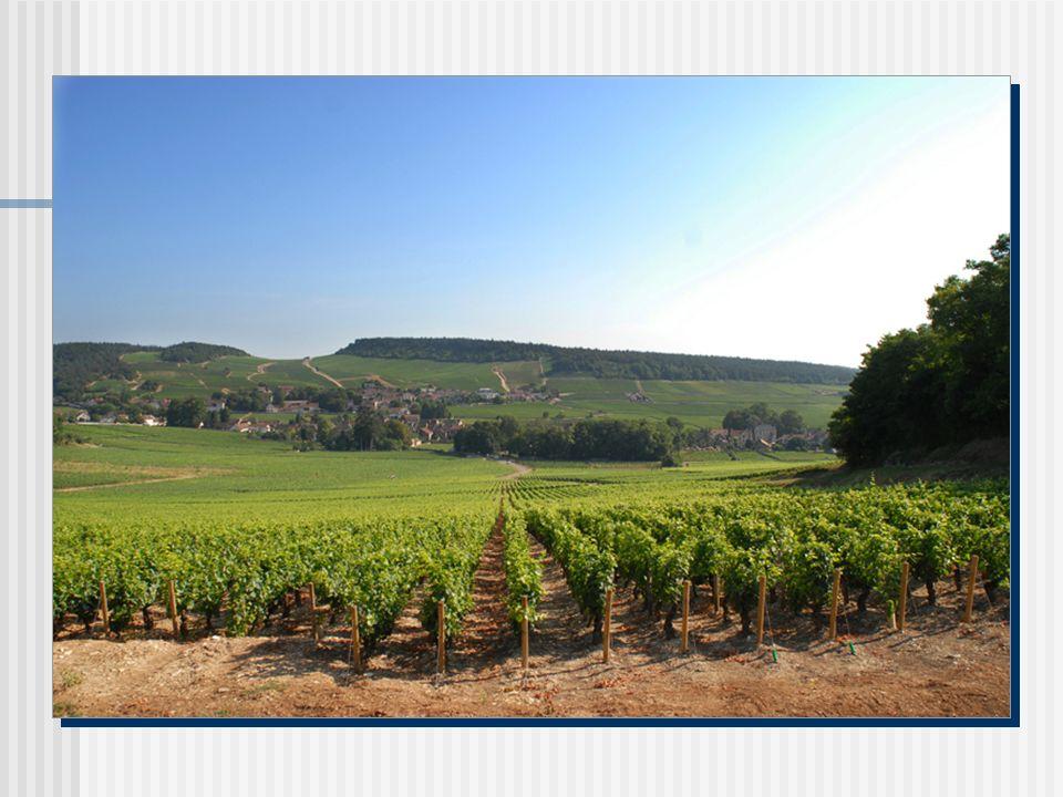 «Rien n égale la joie de l homme qui boit, si ce n est la joie du vin d être bu.» (Charles Baudelaire - Paradis artificiels)