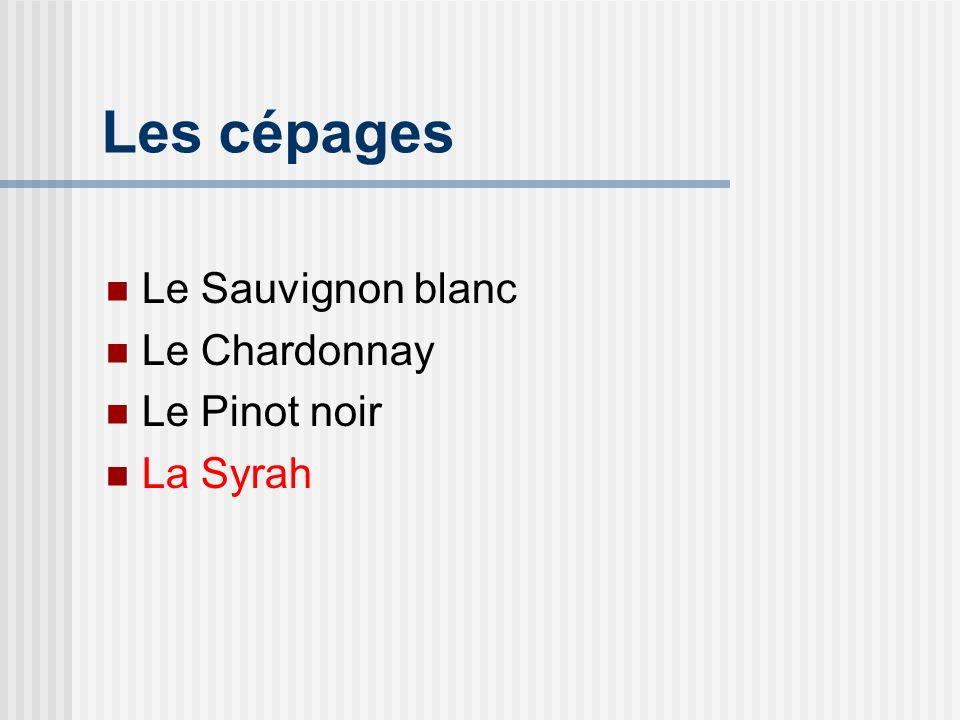 Généralités Cépage des vins classiques de la vallée du Rhône (Hermitage, Saint-Joseph, Cornas, Côte-Rôtie) A le nom de shiraz en Australie, en Californie et en Afrique du Sud.