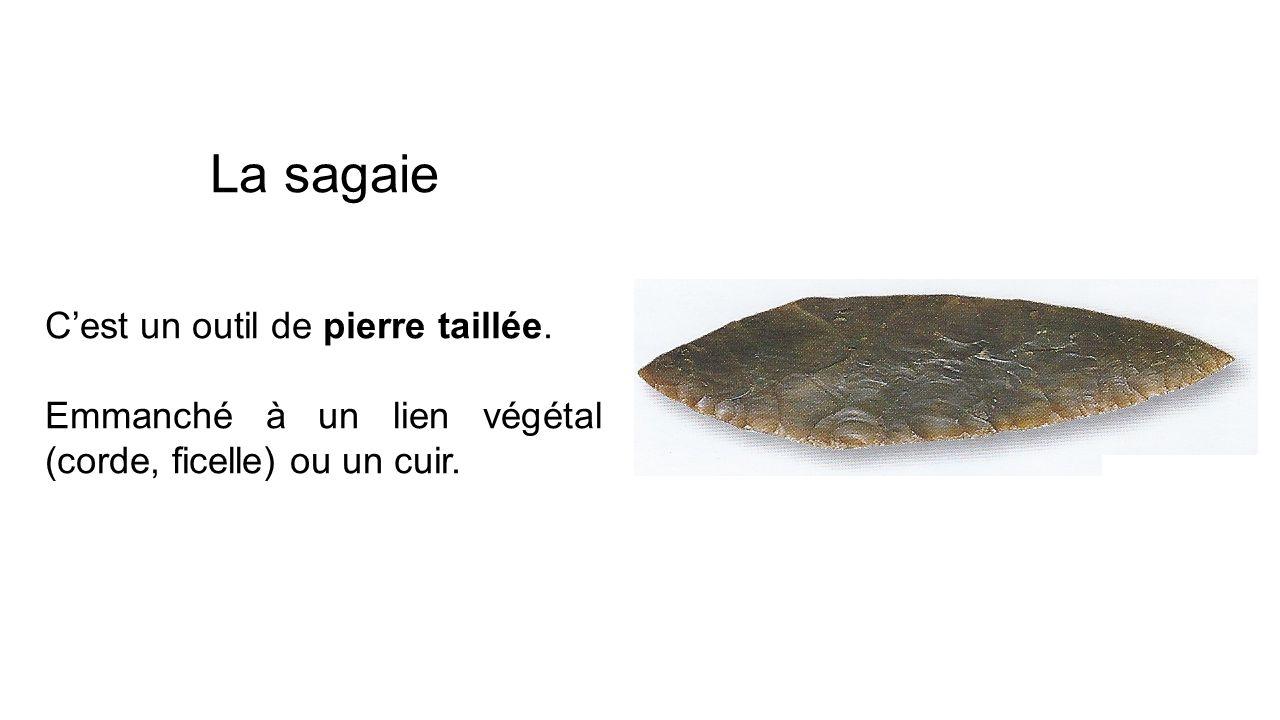 La sagaie Cest un outil de pierre taillée. Emmanché à un lien végétal (corde, ficelle) ou un cuir.
