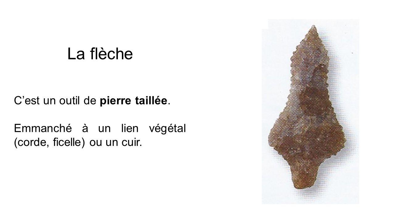 La flèche Cest un outil de pierre taillée. Emmanché à un lien végétal (corde, ficelle) ou un cuir.