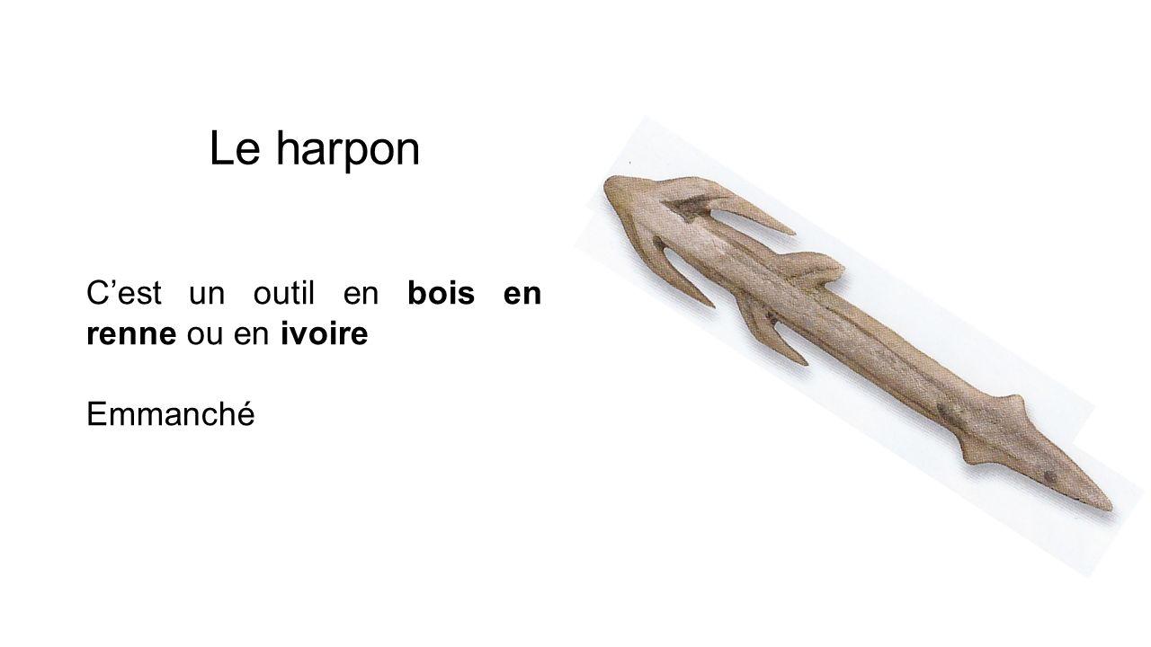 Le harpon Cest un outil en bois en renne ou en ivoire Emmanché