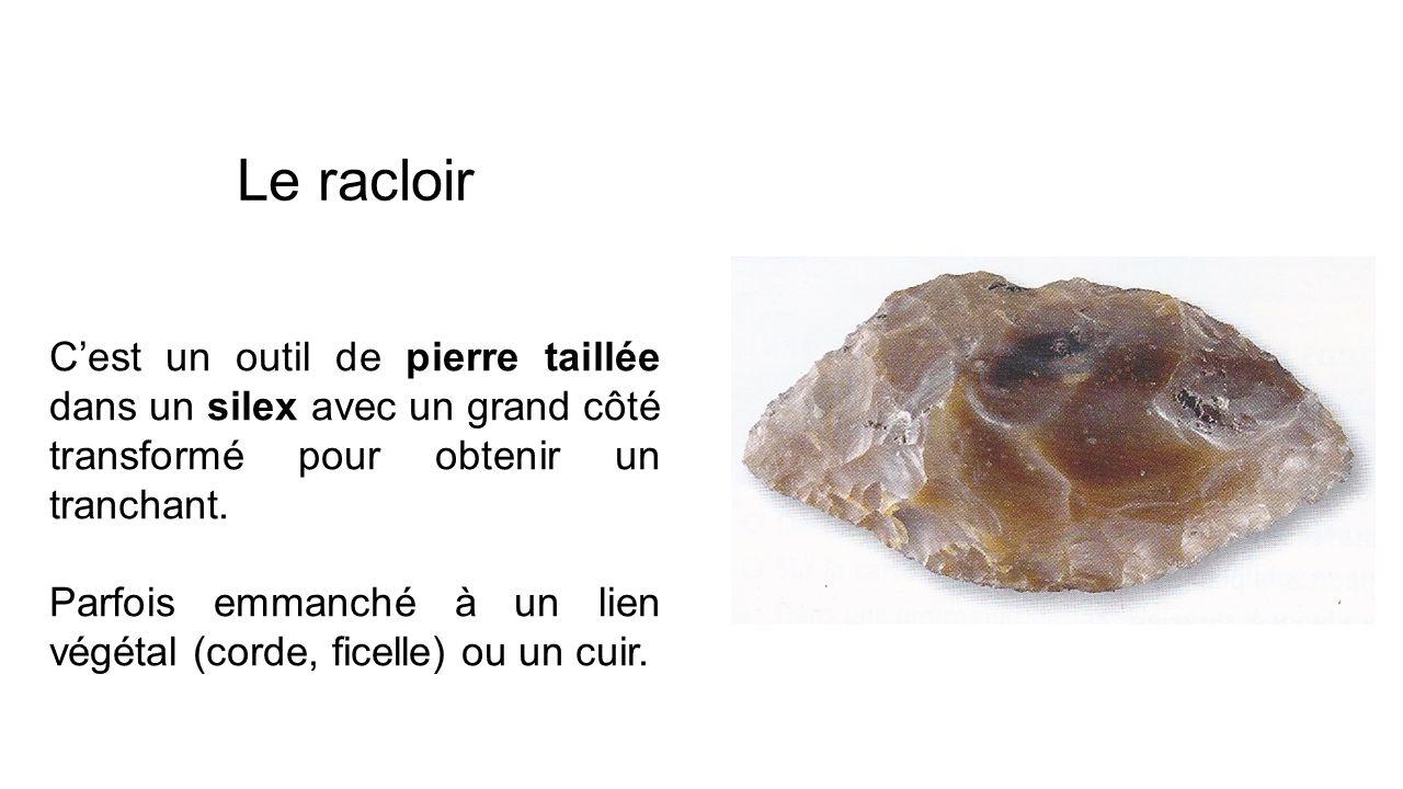 Le racloir Cest un outil de pierre taillée dans un silex avec un grand côté transformé pour obtenir un tranchant. Parfois emmanché à un lien végétal (