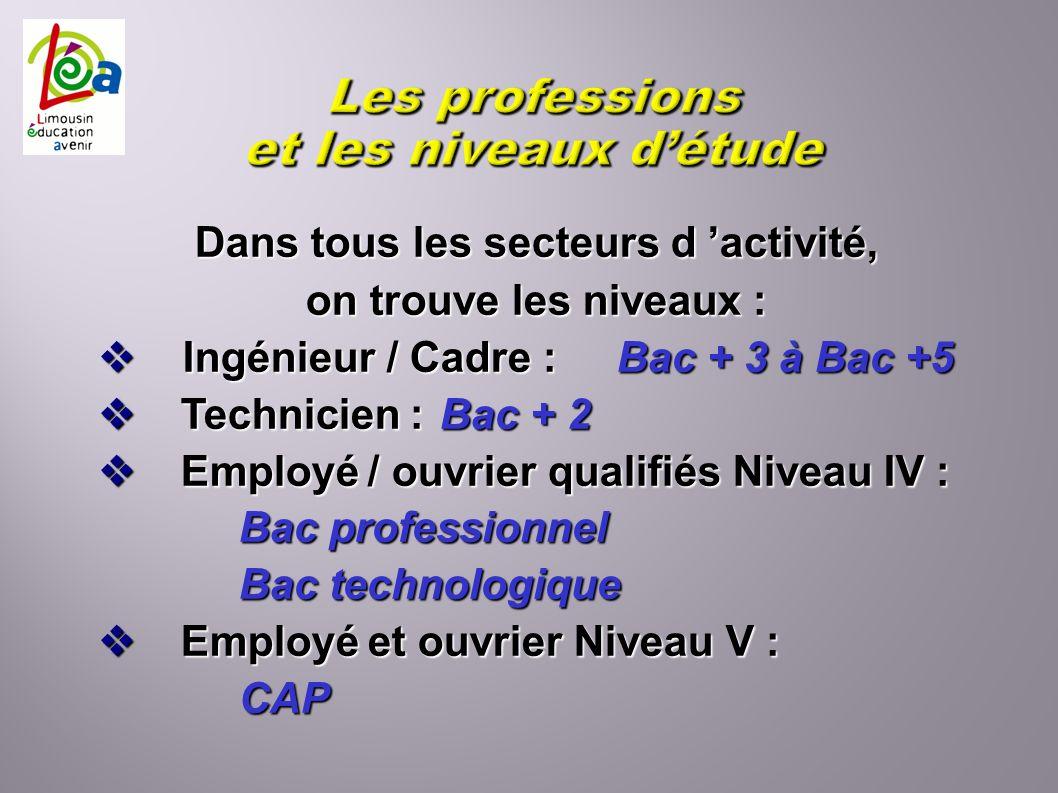 Dans tous les secteurs d activité, on trouve les niveaux : Ingénieur / Cadre : Bac + 3 à Bac +5 Ingénieur / Cadre : Bac + 3 à Bac +5 Technicien : Bac