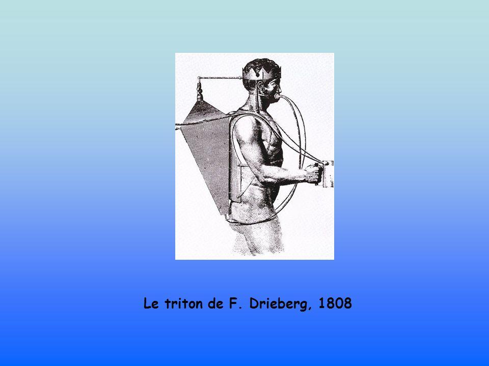 Le triton de F. Drieberg, 1808